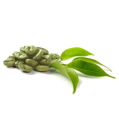 café vert régime