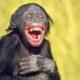 rire bon pour la santé